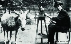 Bugatti and Donkey.jpg